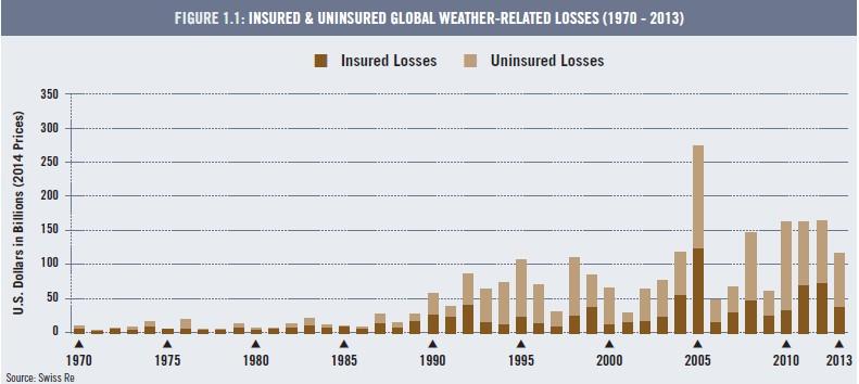 Insured Losses