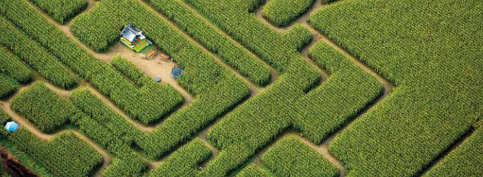 biofuels_report_